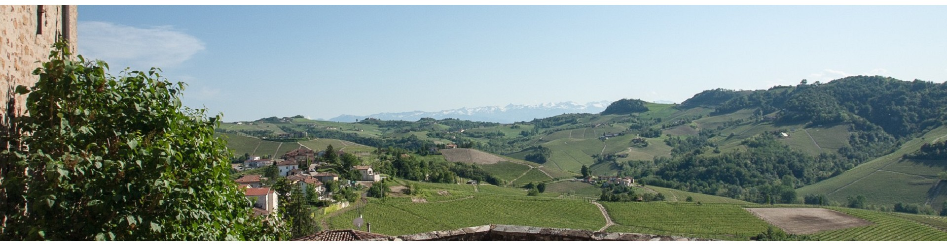 Barolo Wine Tours | Piedmont Wine Tours from Milan | Piedmont Food and Wine Tours